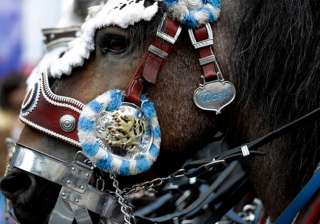 A festively decorated horse participates in the traditional costume and riflemen parade on the second day of the 183rd Oktoberfest beer festival in Munich.