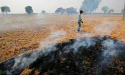 Centre to buy parali from farmers and use it with coal as