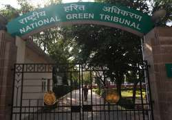 NGT seeks report on cattle blood flowing into Yamuna