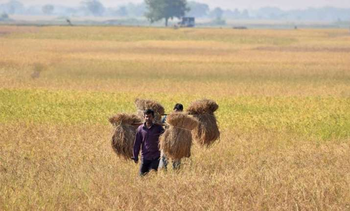 Analysts see farm loan waivers touching 2 per cent of GDP