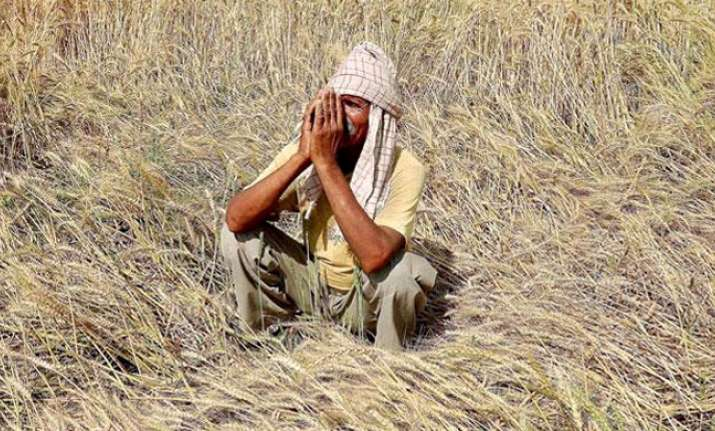 Three farmers' suicides reported in Madhya Pradesh in one