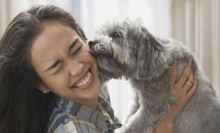 Do you know why your pet dog licks your face?
