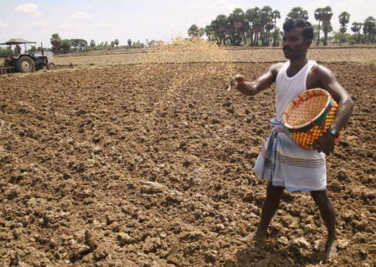 centre allows farmers to use Rs 500 note for seed purchase- India Tv