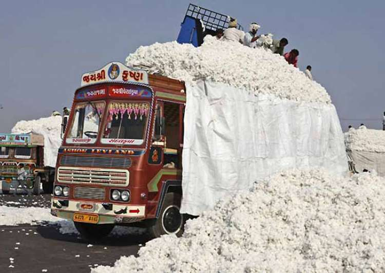 Pakistan suspends cotton import from India- India Tv