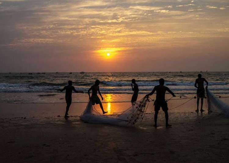 10 Indian fishermen arrested by Sri Lankan Navy- India Tv