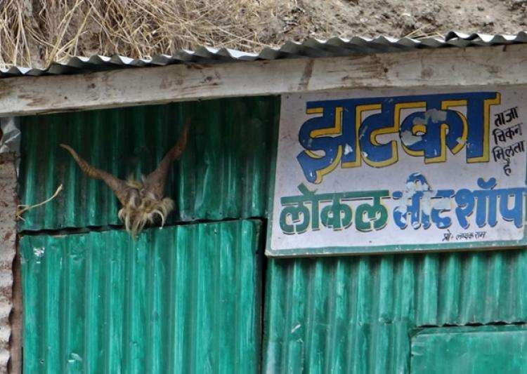 Now, four more BJP-ruled states crack down on illegal meat- India Tv