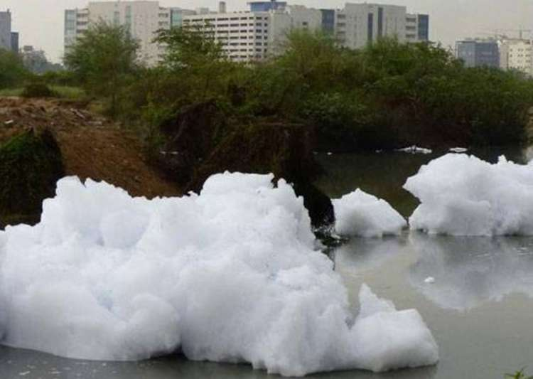File pic of Bellandur Lake- India Tv