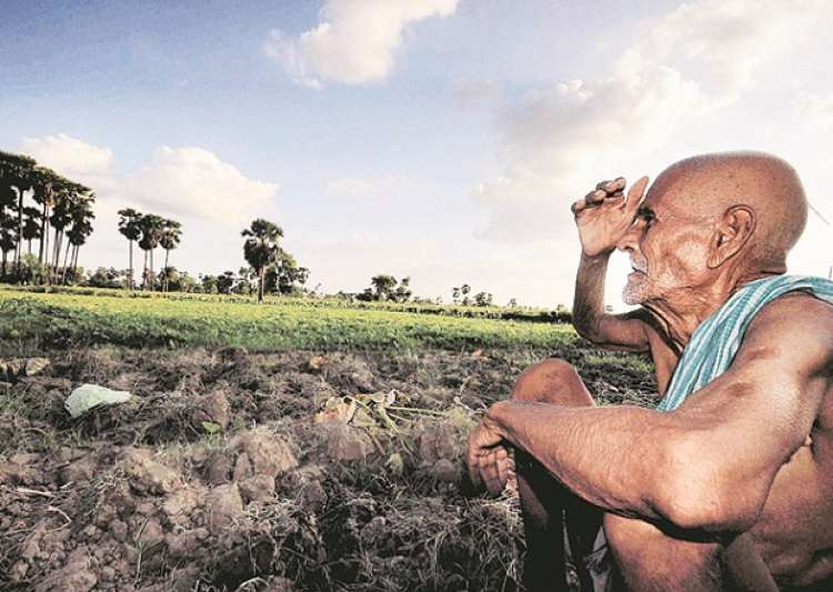 Are waiving off crop loans the only solution to farmers'- India Tv
