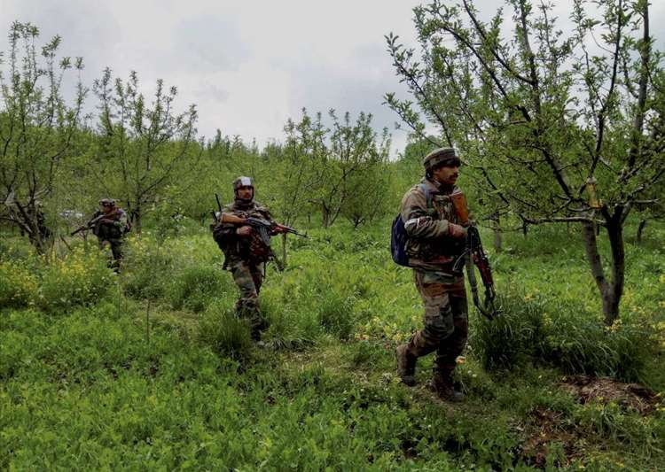 Security forces carry out major search op in Kashmir's- India Tv