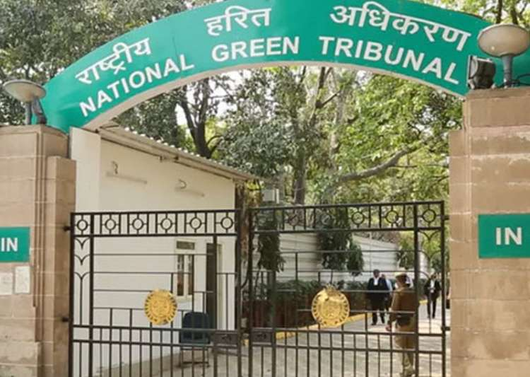 NGT slaps Rs 15 lakh fine on pharma unit in UP for- India Tv