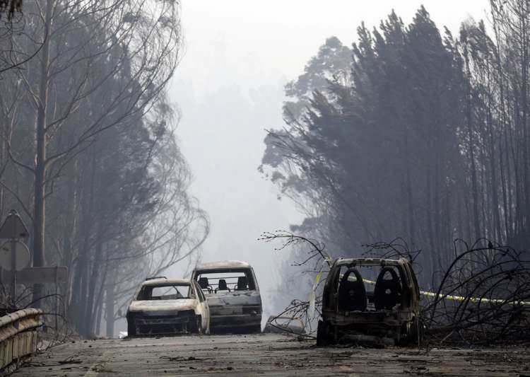 Death toll in Portugal wildfire rises to 64- India Tv