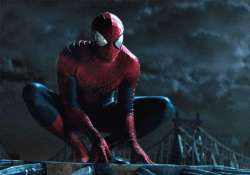 spider man to have a spider woman