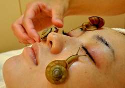 want to get rid of wrinkles use snail gels