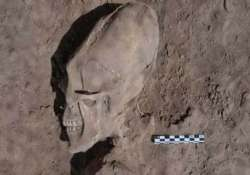 alien like skulls found at 1 000 year old cemetery in mexico
