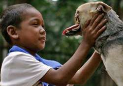 dog in phillipines loses its snout while saving two girls