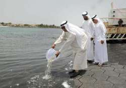 dubai municipality releases 70 000 baby fishes into sea