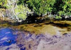 bangladesh tries to prevent ecological disaster after oil