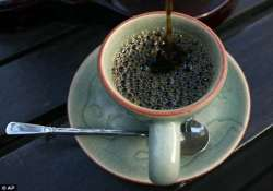 world s most expensive coffee brew comes from elephant dung