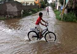 andhra rains claim 53 lives damage crops in 11 lakh hectares