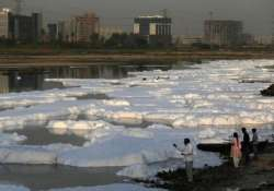 yamuna restoration ngt asks committee to determine flow