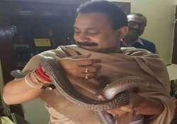 bihar education minister ashok chaudhary wraps a snake in