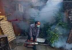 india has six million unreported dengue cases study