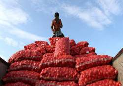 onion from afghanistan arrive to help contain prices