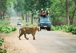 sc extends ban on tourism in core areas of tiger reserves