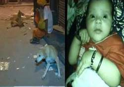 shocking 2 months old baby mauled to death by dog in delhi