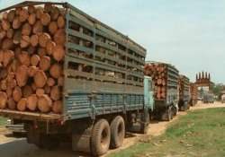 30 smugglers held in andhra 7 tonne red sanders seized