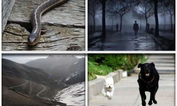 10 most widespread phobias among people