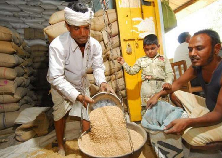 essays on food security in india Hence, drafting a food security bill and passing it in the parliament with absolute majority will alone not solve the purpose of food and malnutrition.