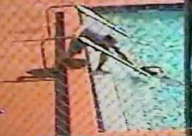 Watch Terrifying Moment Children Electrocuted In Swimming Pool