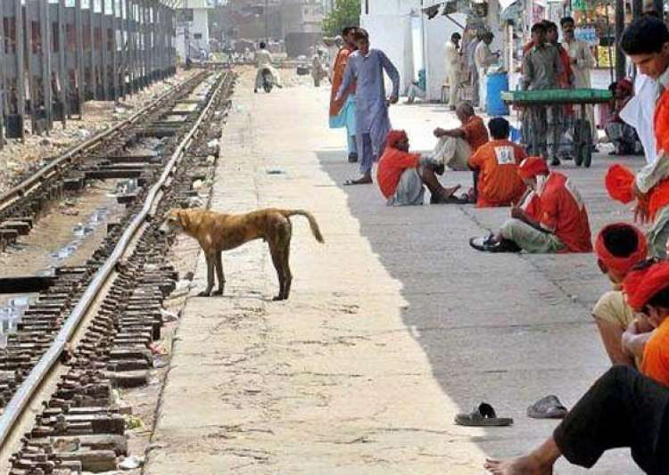 the dog who sacrificed his own life to save train- India Tv