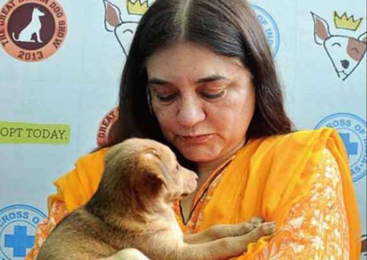 maneka gandhi v union of india Supreme court of india original writ jurisdiction public interest litigation wp (civil) no _____ of 2014  maneka gandhi v union of india, (1978) .