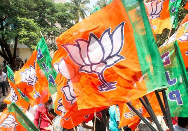 File pic - A BJP worker waves party flag during a rally