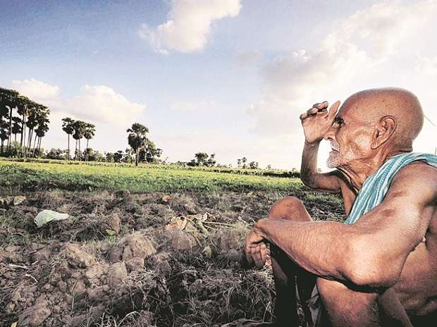 Are waiving off crop loans the only solution to farmers'