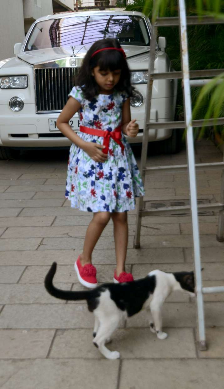 India Tv - Aaradhya Bachchan playing with cat