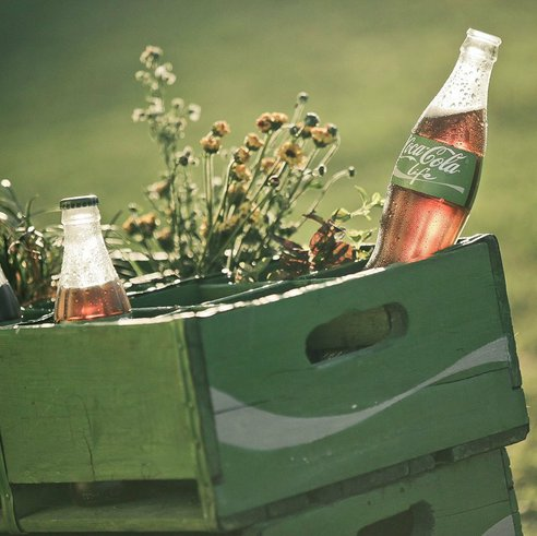 India Tv - Farmers in India uses Coca Cola to protect their crops