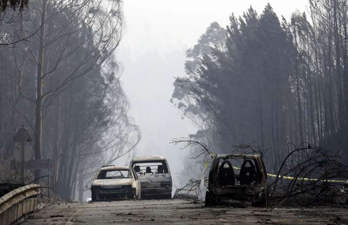 Death toll in Portugal wildfire rises to 64