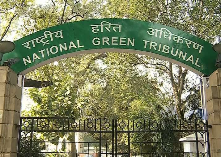 File pic - National Green Tribunal