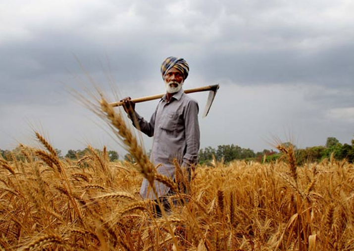 Agriculture sector didn't see reforms for 25 years: NITI