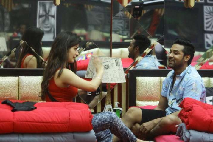 Bandgi Kalra Puneesh Sharma bigg boss 11