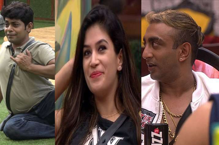 Akash Dadlani, Arshi Khan Win The Garnier Task, Jump Into The Pool