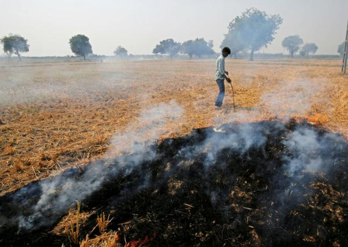 NGT pushes use of crop residue as fuel