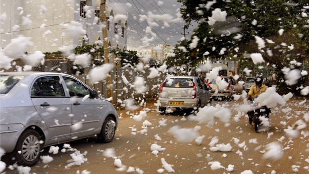 After delightful showers, Bengalureans struggle with 'chemical snowfall'