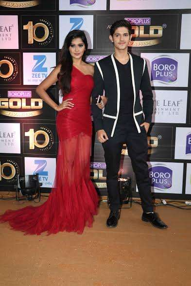 India Tv - TV actors at Zee Gold Awards