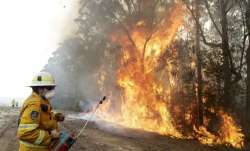 19 people killed in forest fire in China