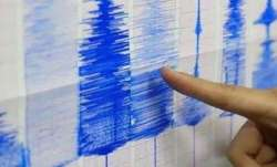new zealand earthquake video