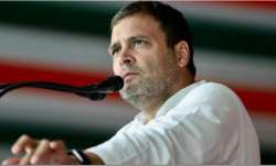 Rahul Gandhi keeps mum on return as party president in virtual meet with party MPs